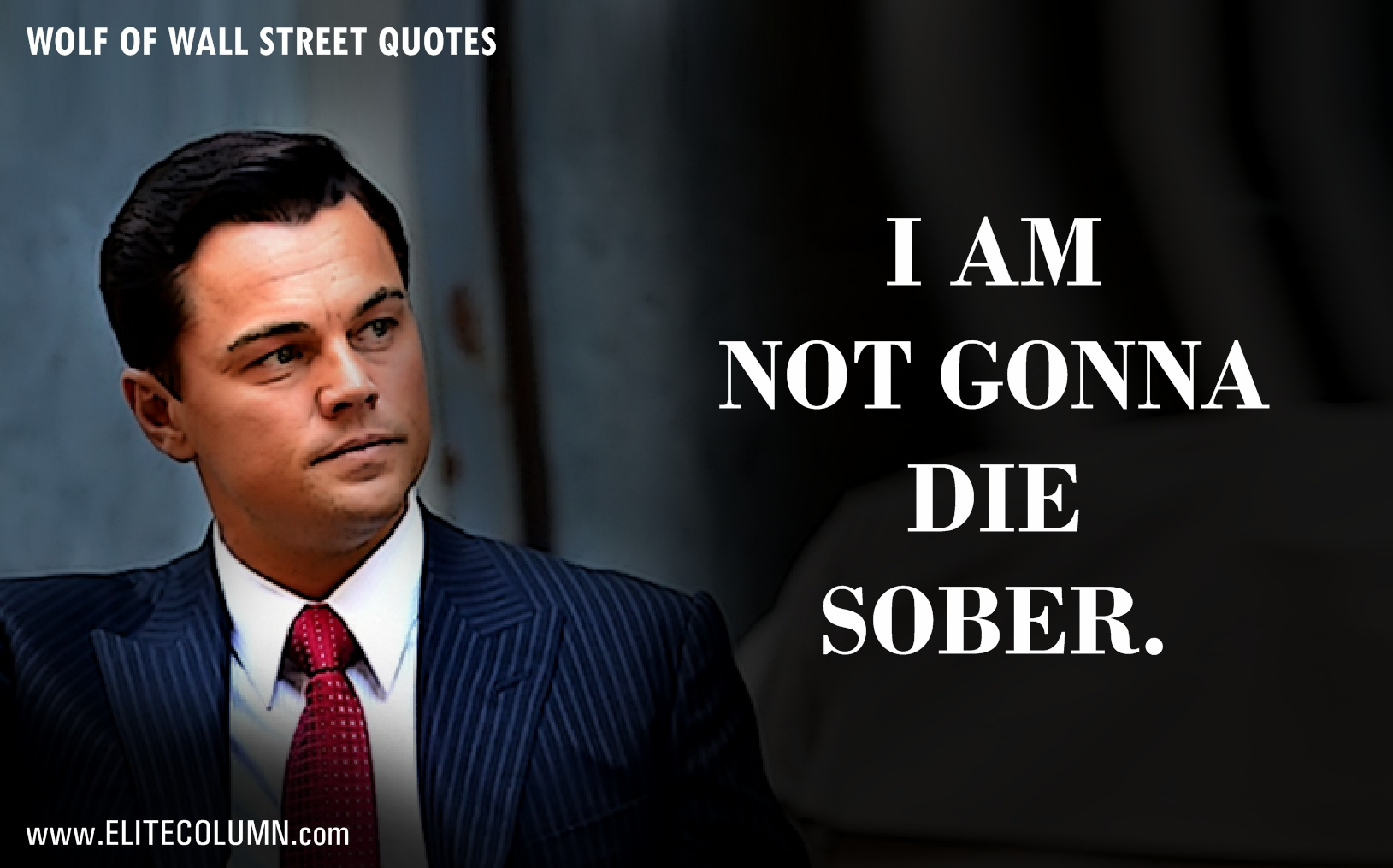 "Wall Street Quotes Cool 12 Epic Leonardo Dicaprio Quotes From ""the Wolf Of Wall Street"