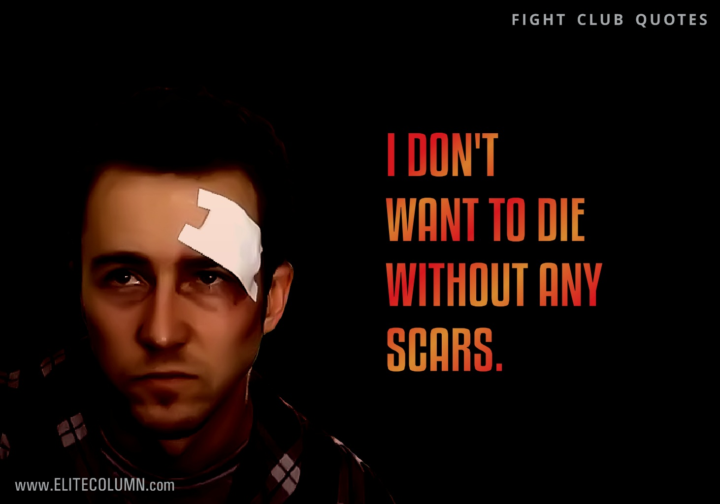 Fight Club Quotes (12)