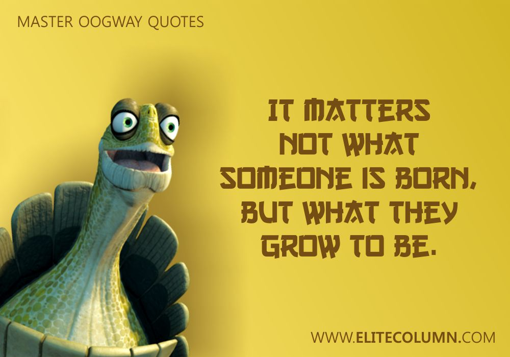 Master Oogway Quotes (3)