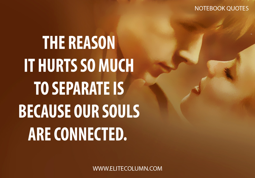 12 beautiful the notebook movie quotes elitecolumn