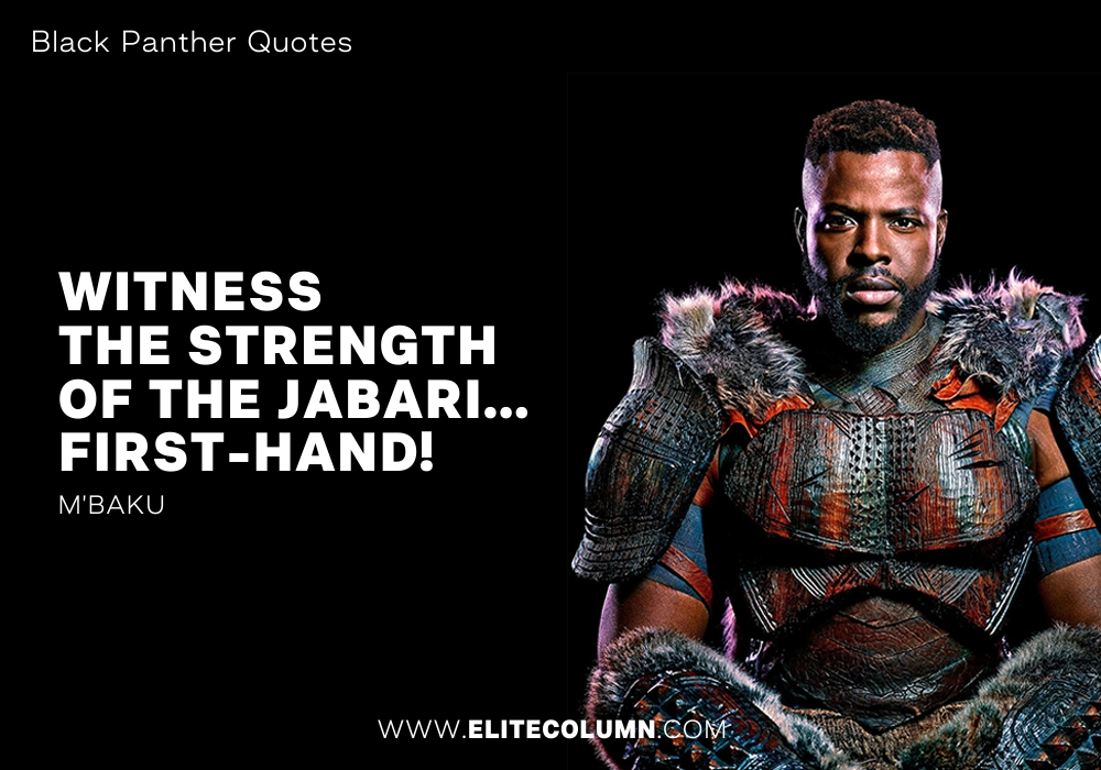 Black Panther Quotes (6)