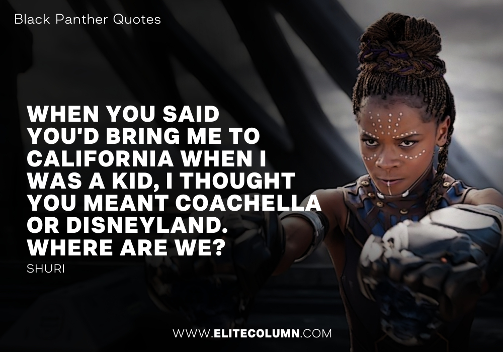 Black Panther Quotes (8)