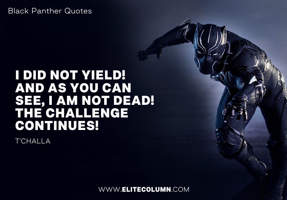Black Panther Quotes (4)