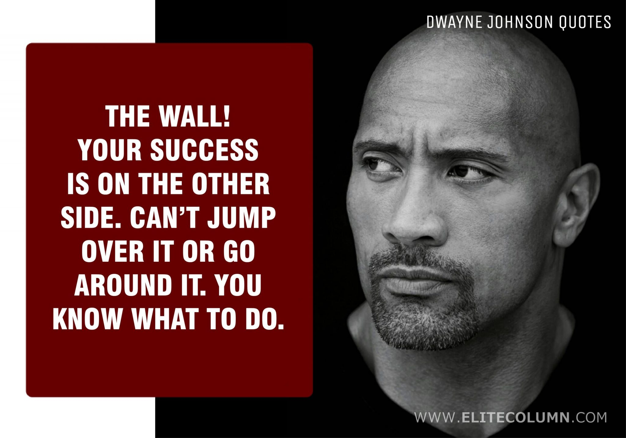 Dwayne Johnson Quotes (6)