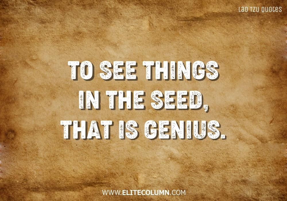 Lao Tzu Quotes (16)