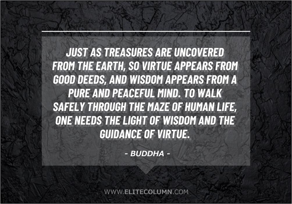 Wisdom Quotes (5)