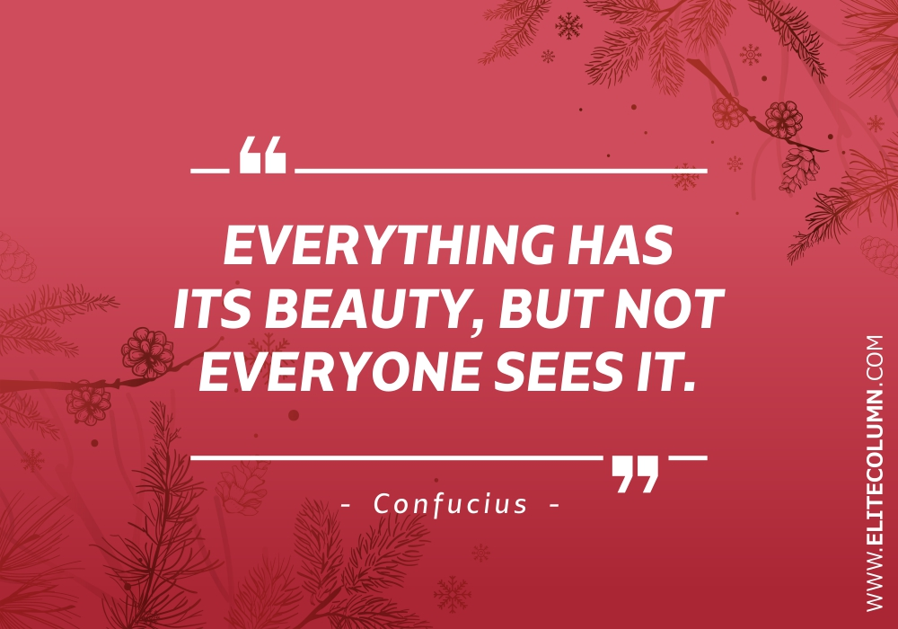 Beauty Quotes (5)