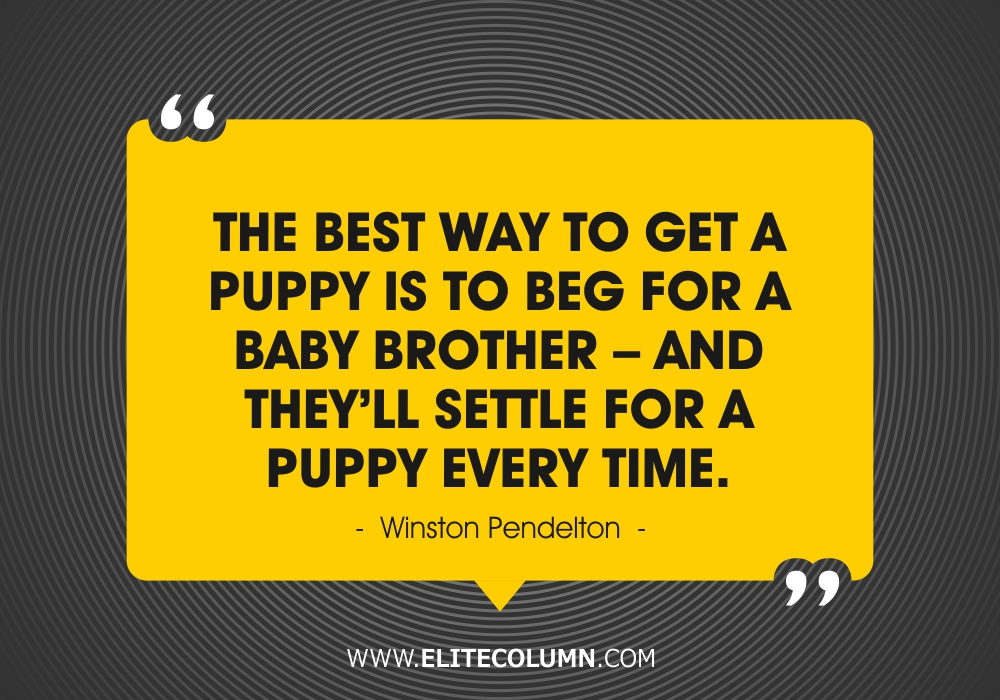 Brother Quotes (10)