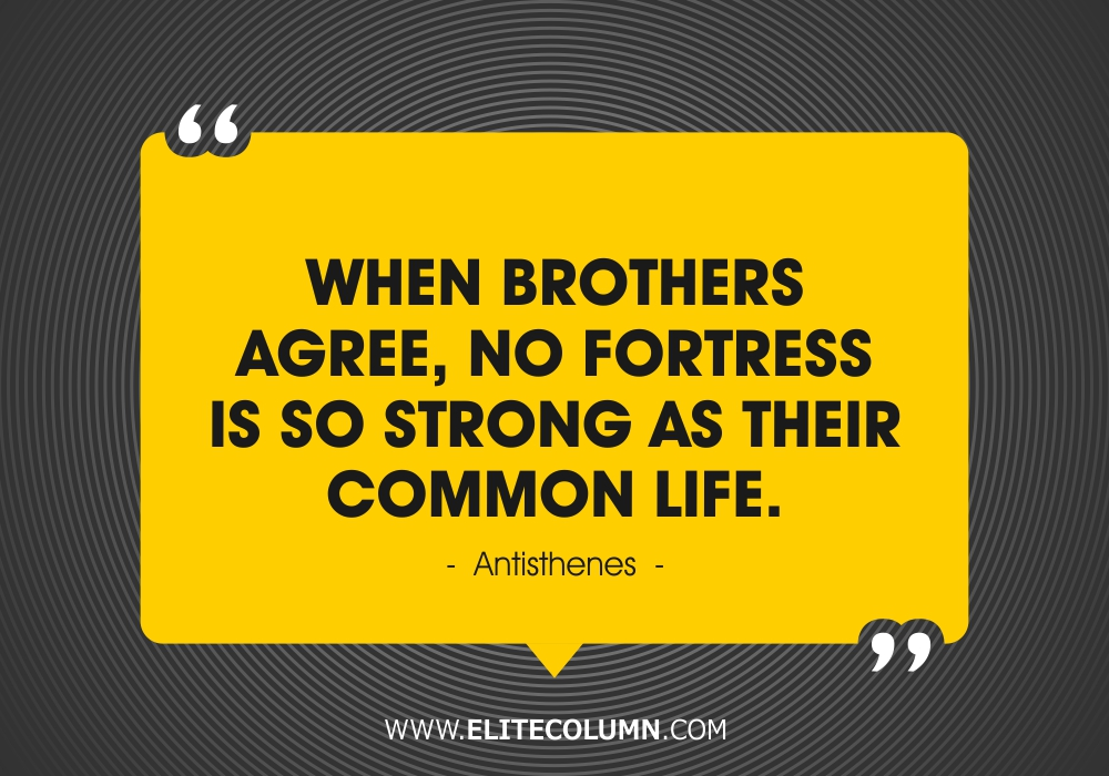 Brother Quotes (6)
