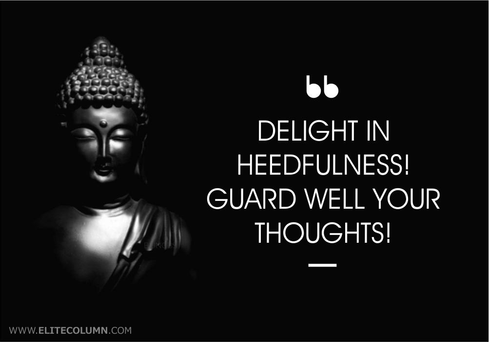Buddha Quotes (8)