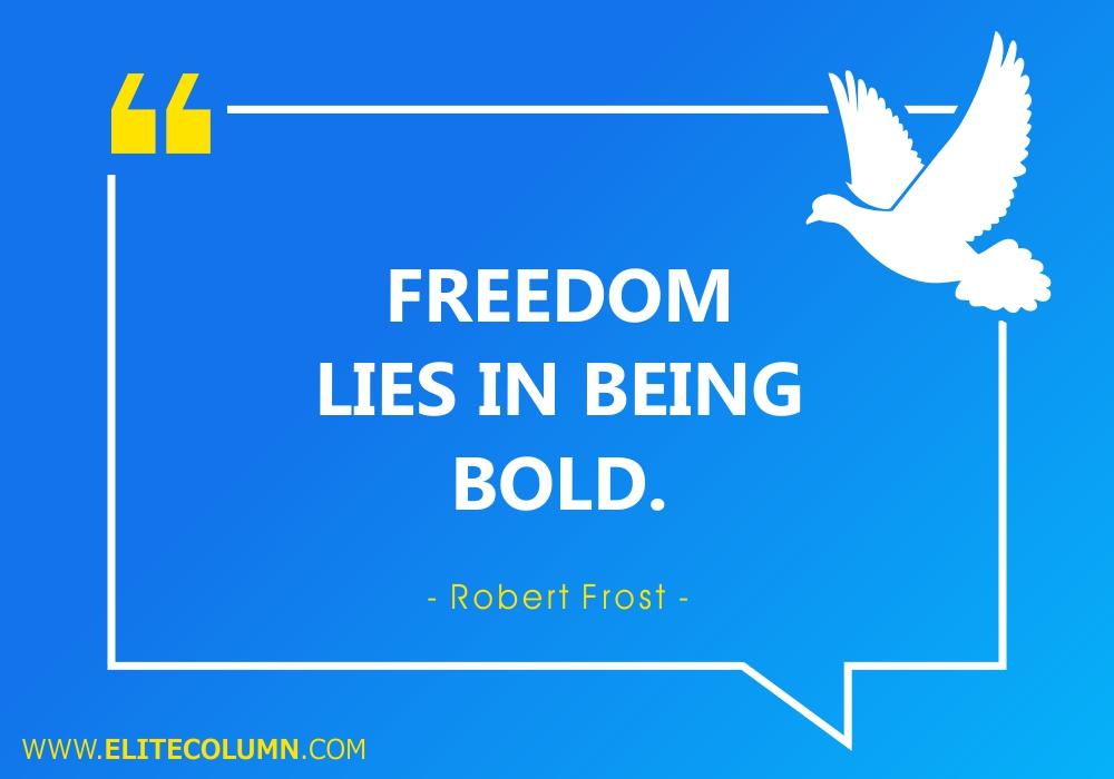 Freedom Quotes (5)