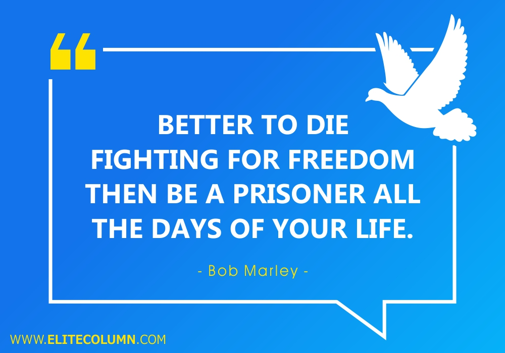Freedom Quotes (6)