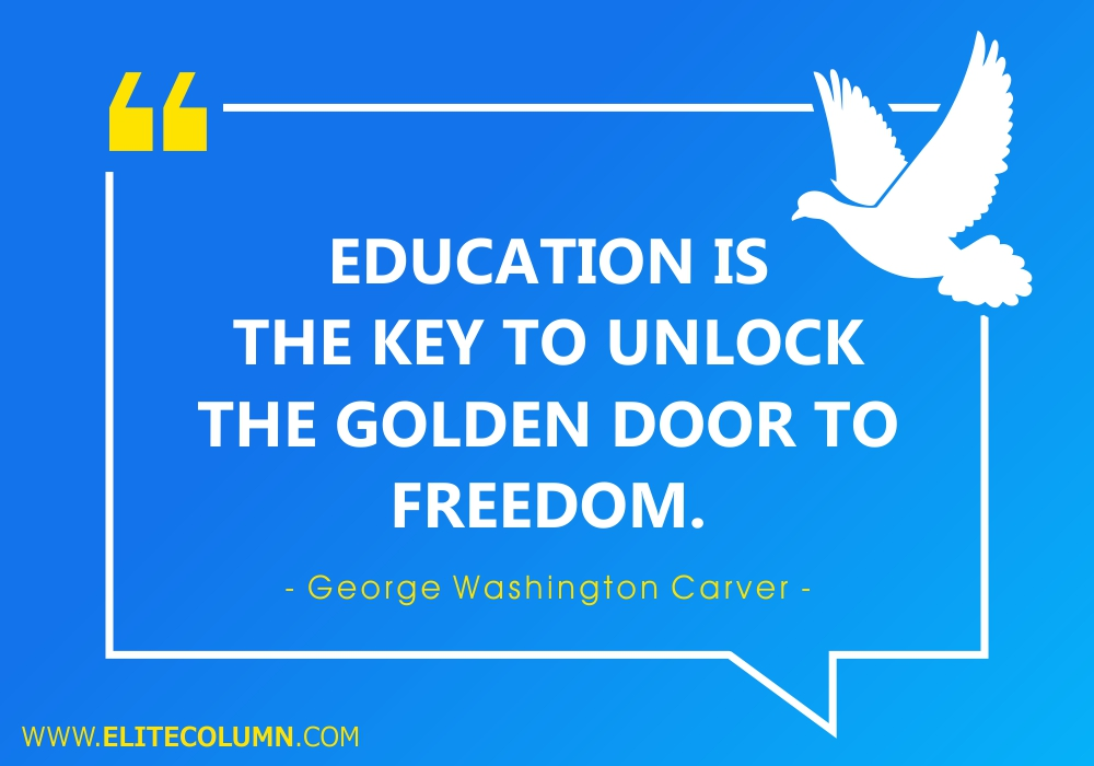 Freedom Quotes (7)