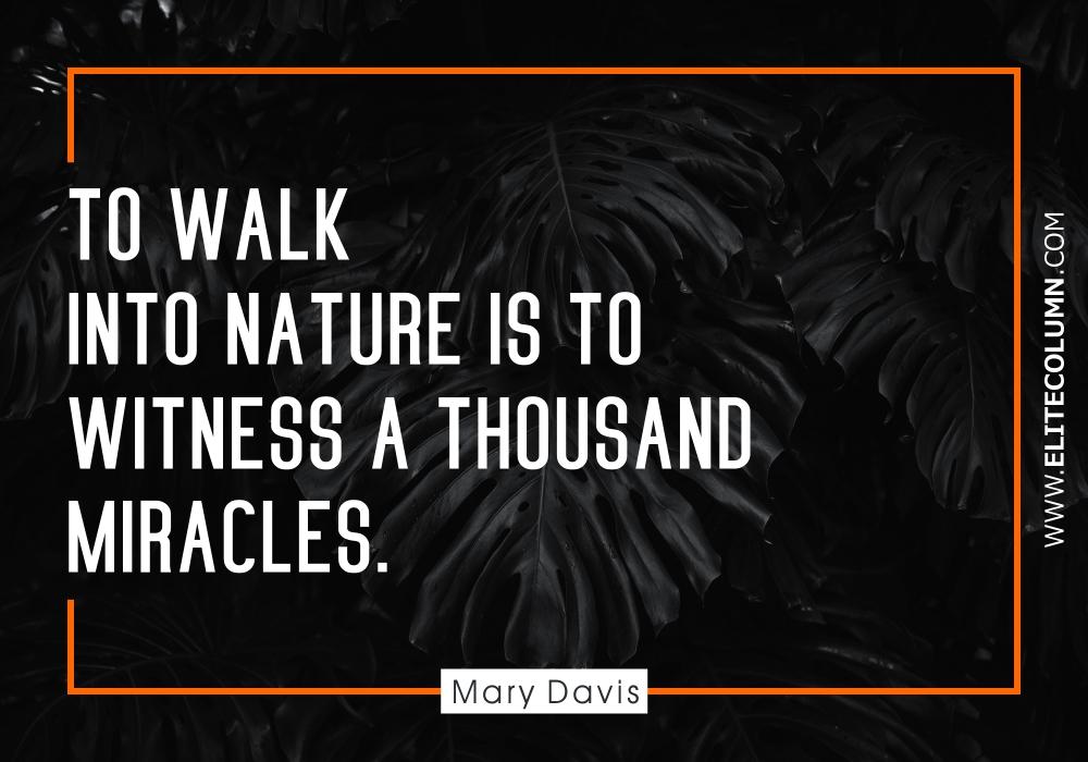 Nature Quotes (3)