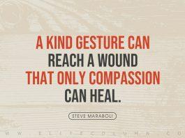 Compassion Quotes (1)