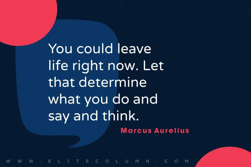 Stoic Quotes (3)