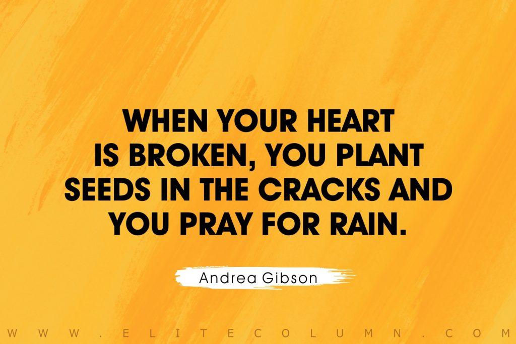 Broken Heart Quotes (7)