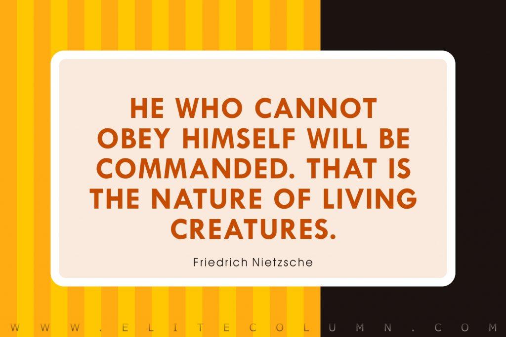 Discipline Quotes (8)