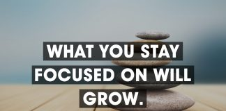 Focus Quotes (8)