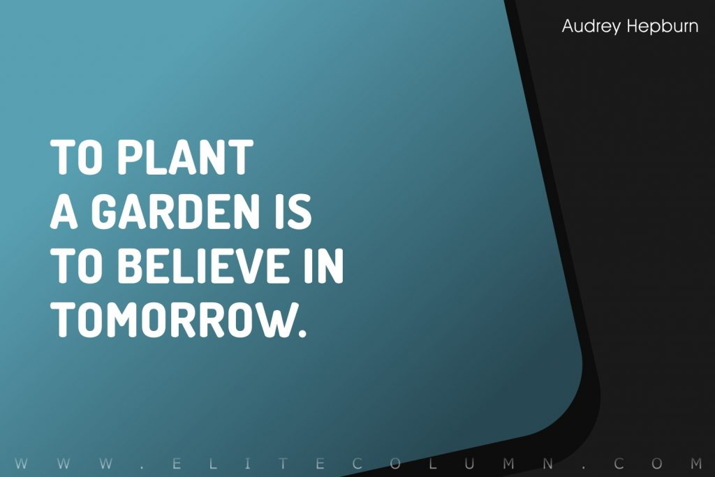 Audrey Hepburn Quotes (4)
