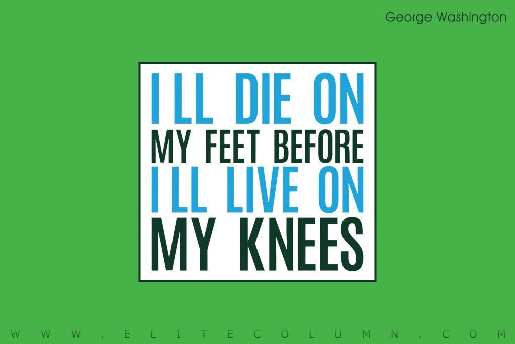 George Washington Quotes (7)
