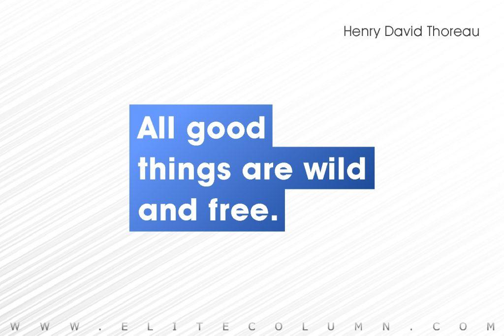 Henry David Thoreau Quotes (5)