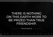 Fake Friend Quotes (1)