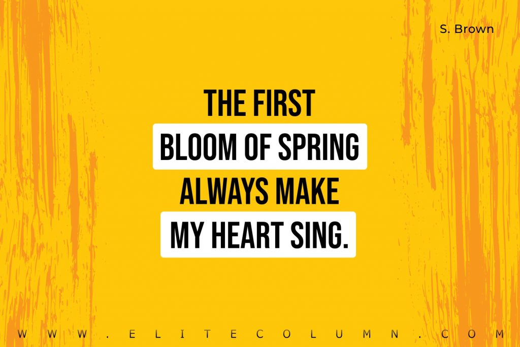 Spring Quotes (8)
