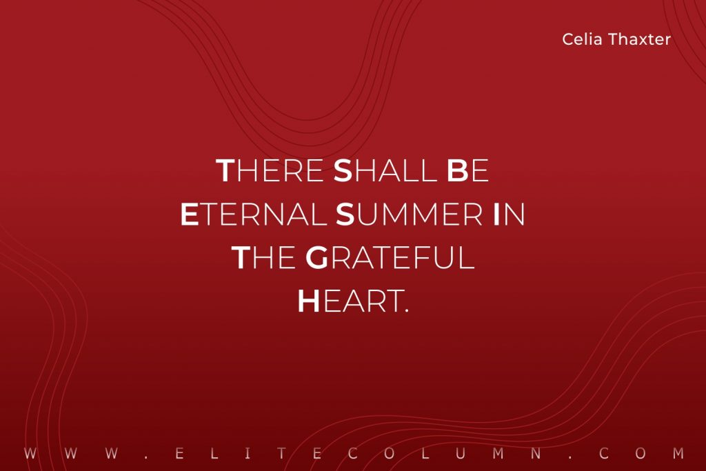Summer Quotes (10)