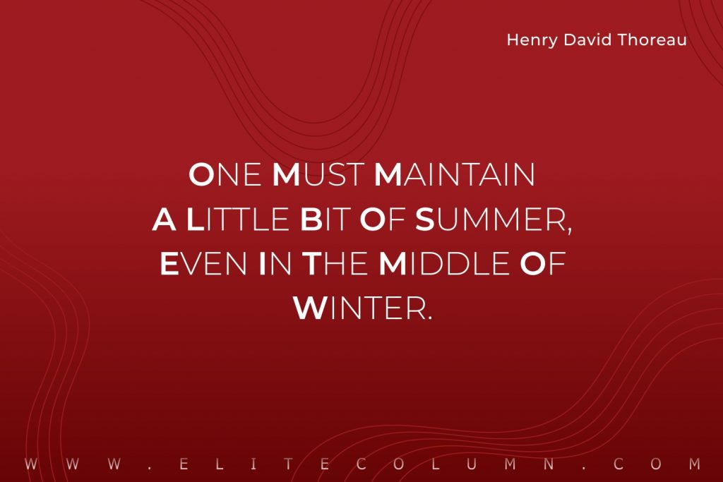 Summer Quotes (9)