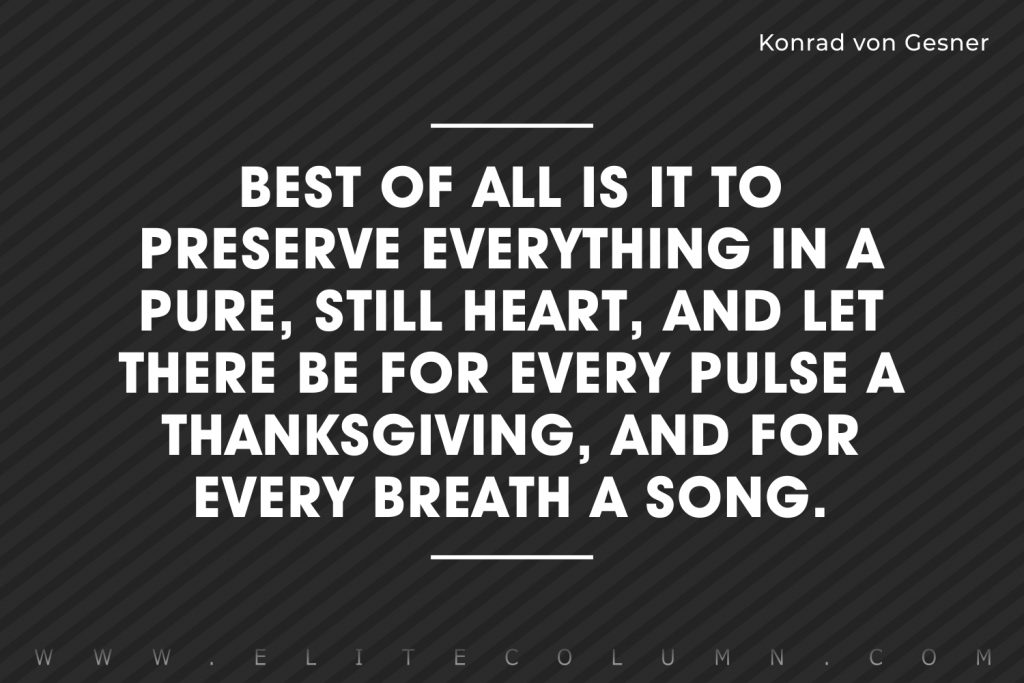Thanksgiving Quotes (8)