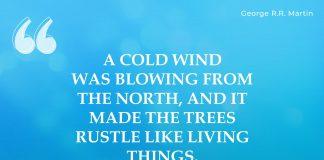 Winter Quotes (4)