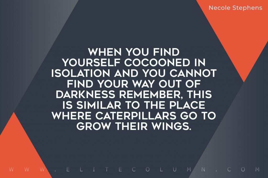 Butterfly Quotes (1)