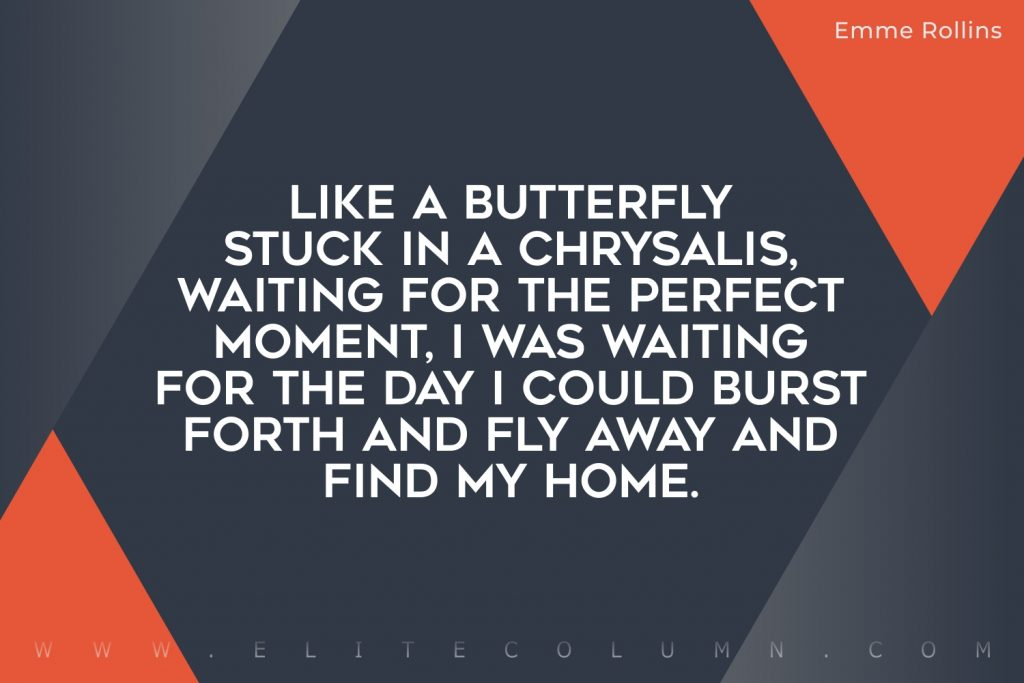 Butterfly Quotes (4)