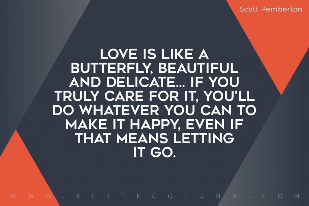 Butterfly Quotes (6)