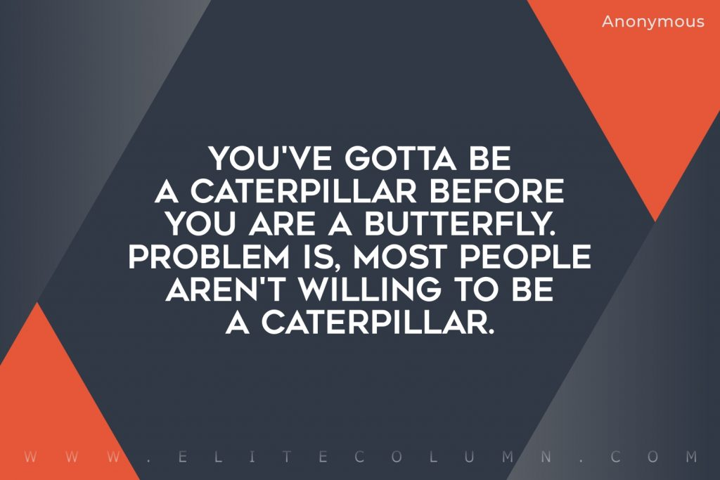 Butterfly Quotes (7)