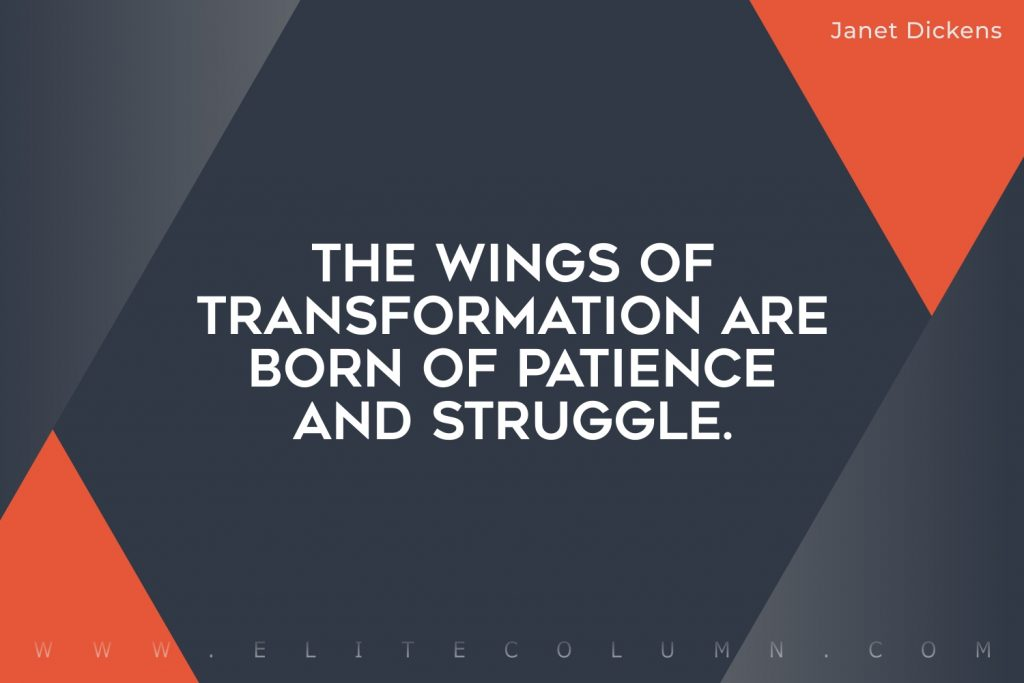 Butterfly Quotes (8)
