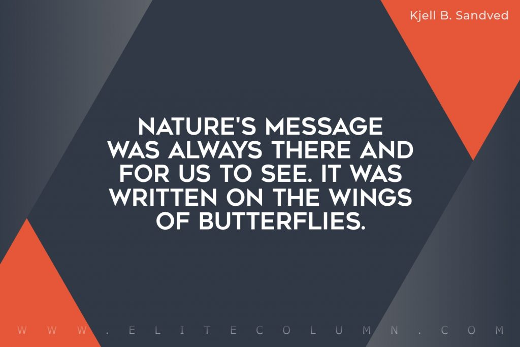 Butterfly Quotes (9)