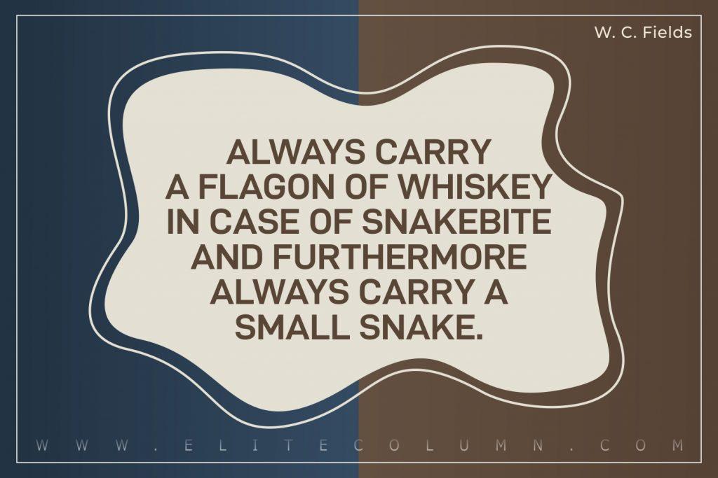 Sarcastic Quotes (9)