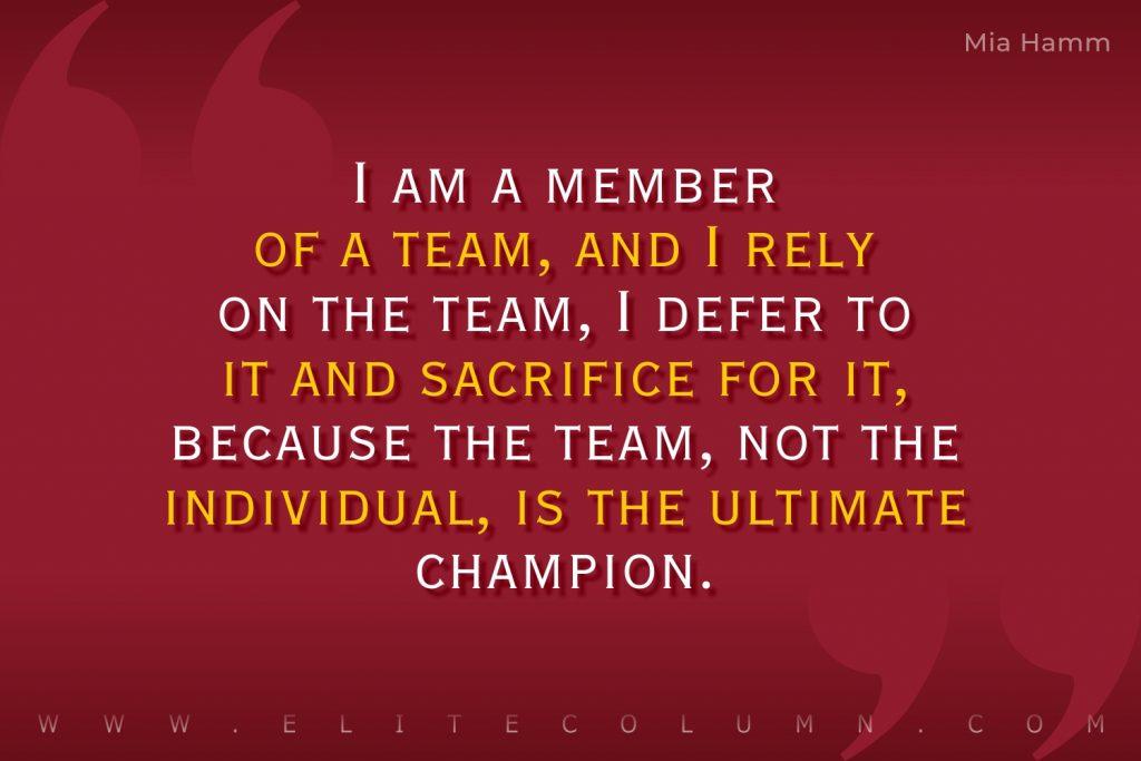 Teamwork Quotes (7)